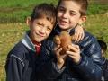 raccolta delle patate DSC_0447