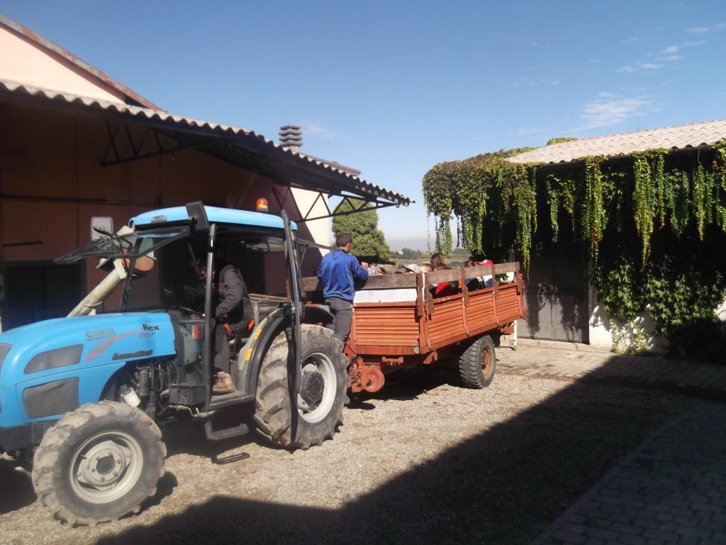 trattore033
